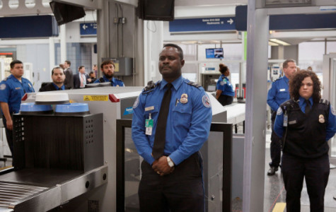 15 reasons why the TSA's Instagram will leave you speechless