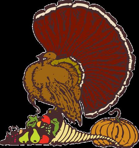 10 Random Thanksgiving Facts