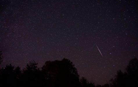 November Meteor Showers