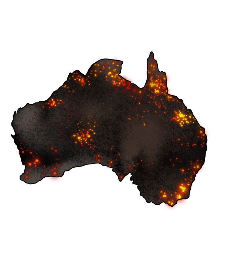 The damaging human and animal effects of the Australian wildfires