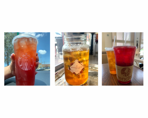 Rating Teas Around Florida